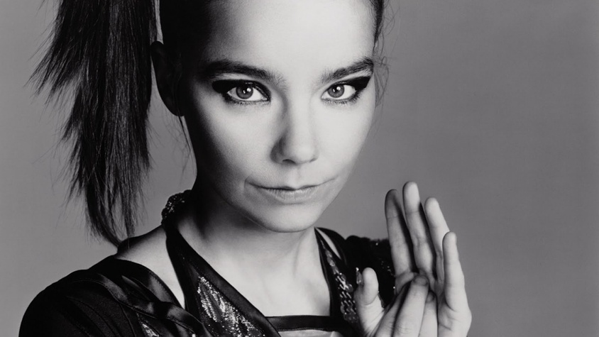 Le portrait de Björk