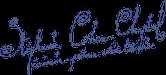 Stéphanie Cohen-Chaptal - Écrivain Poétesse, en écrivant ses wordportraits, elle magnifie l'œuvre de personnalités remarquables